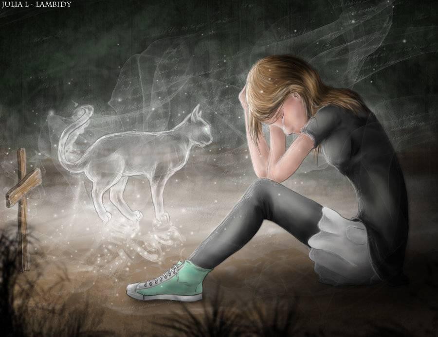 Как пережить смерть домашнего животного?