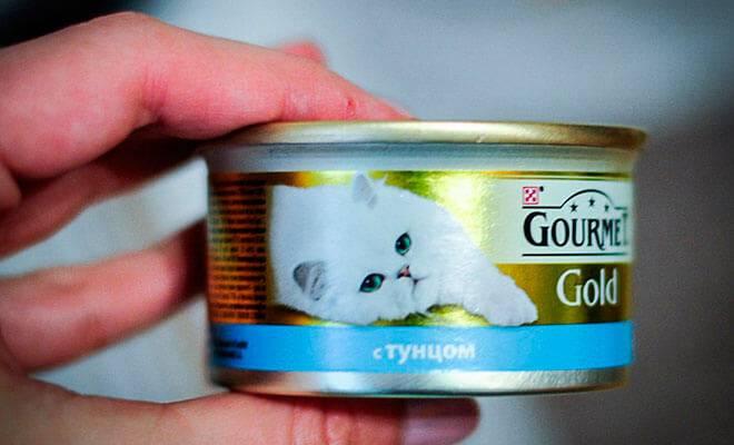 Отзывы о корме gourmet (гурме) для кошек