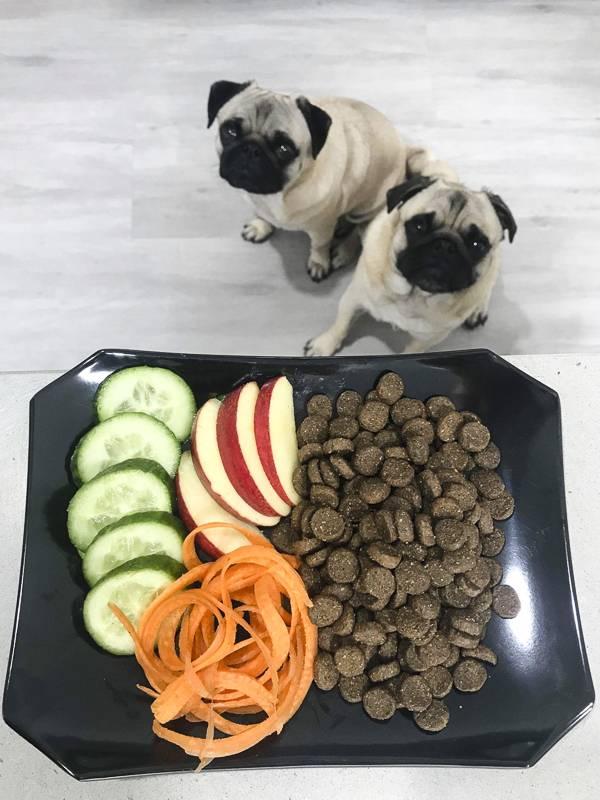 Перечень натуральных продуктов для мопсов и выбор лучшего сухого питания