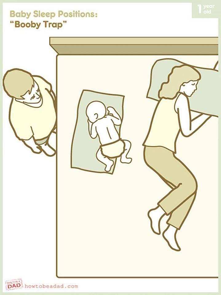 Спать с собакой: плюсы для для здоровья, риски и предосторожности
