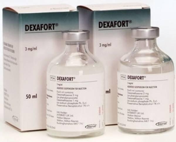 Дексафорт для собак – когда без гормонов не обойтись