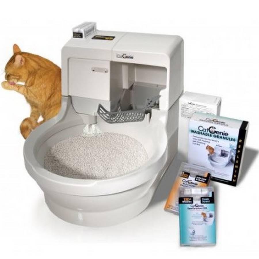 Умные туалеты для кошек: автоматика будет лучшим подарком для вас и питомца