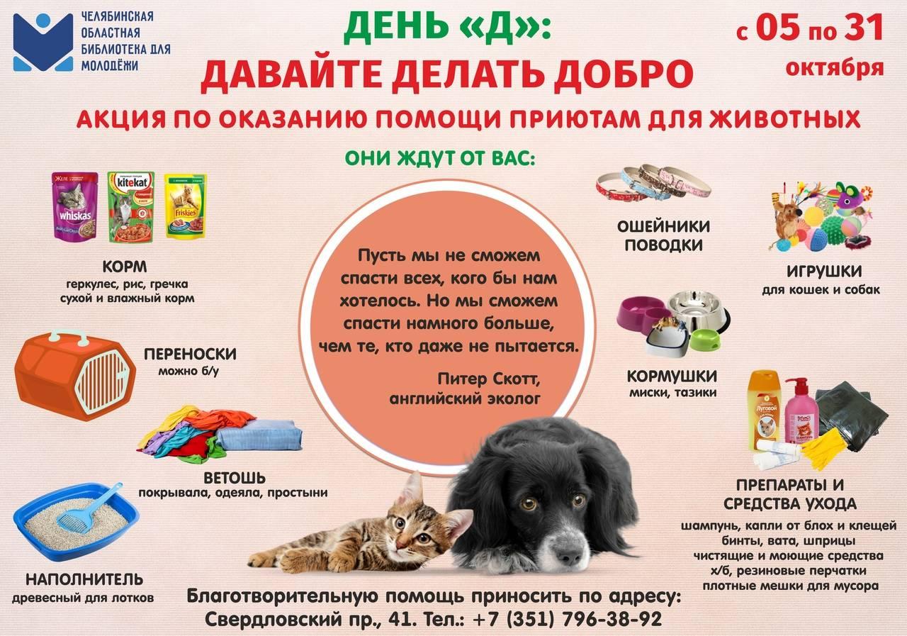 Соцсеть для владельцев животных - объявления, личные страницы, фото видео животных и многое другое