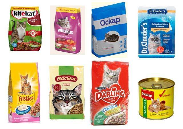 12 лучших производителей кормов для кошек и котов