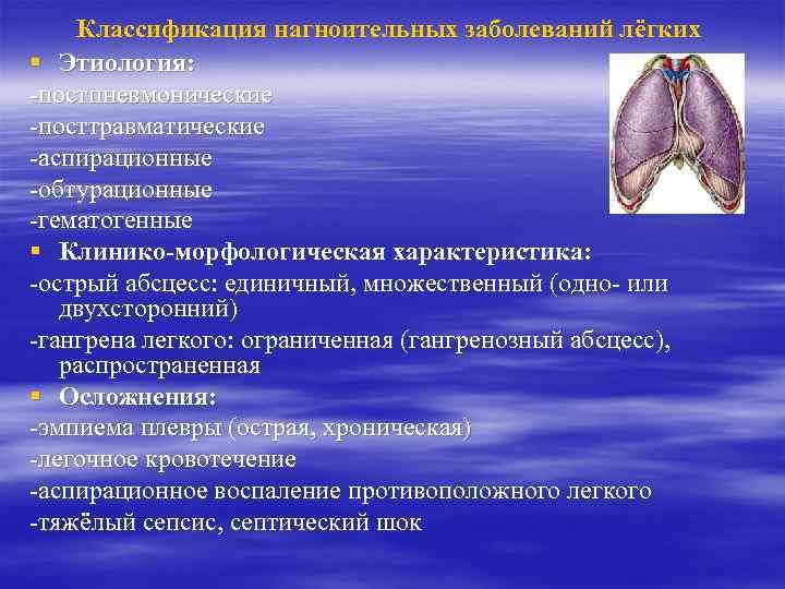 Гидроторакс у кошек: причины и лечение