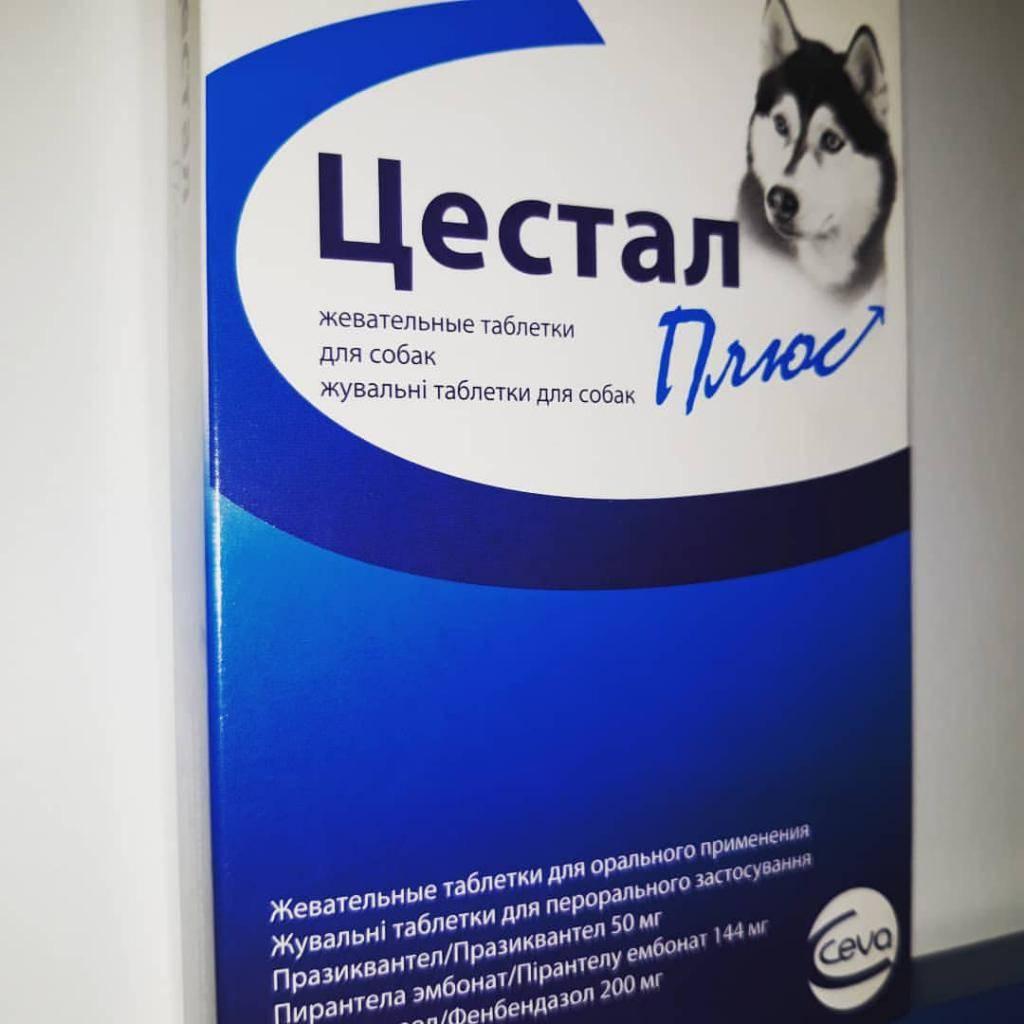 Цестал плюс / cestal plus (таблетки) для собак | отзывы о применении препаратов для животных от ветеринаров и заводчиков