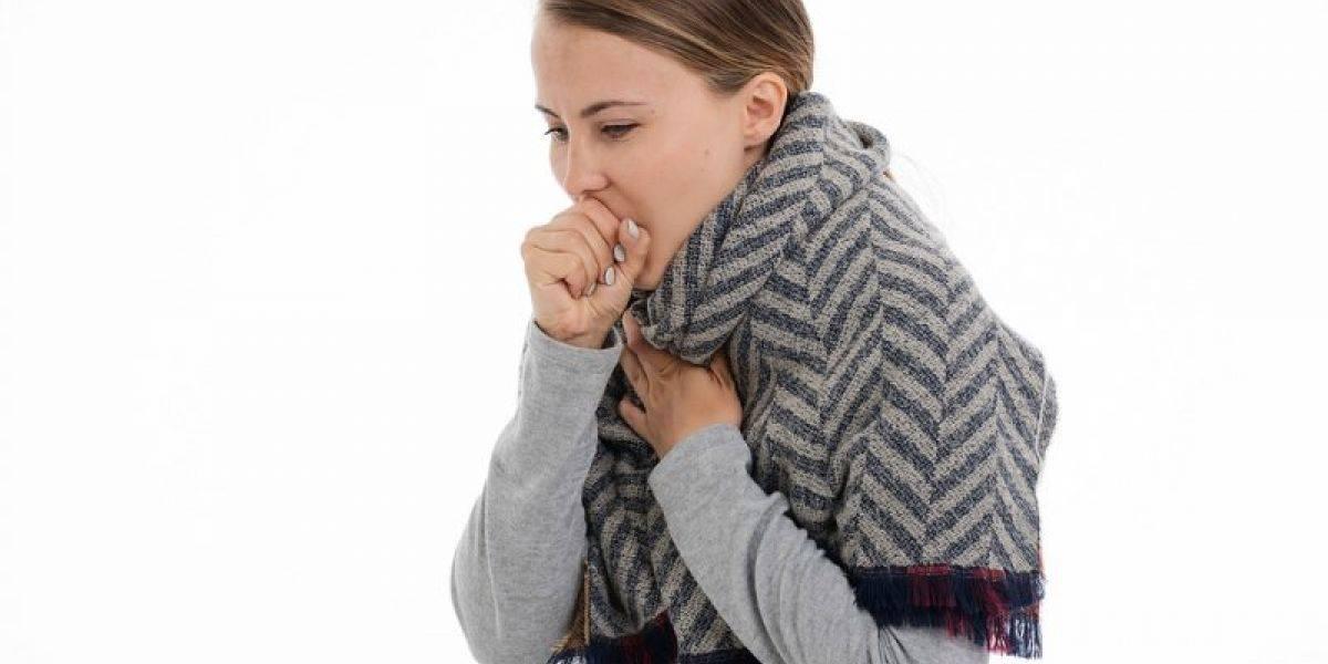 Как вылечить и чем помочь собаке при вирусном кашле?