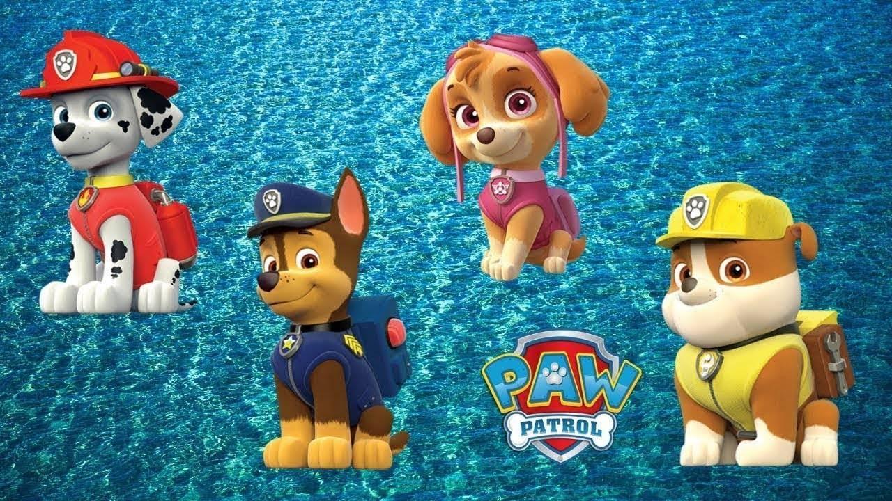 Щенячий патруль: полная информация об игрушках. мультфильм и игрушки