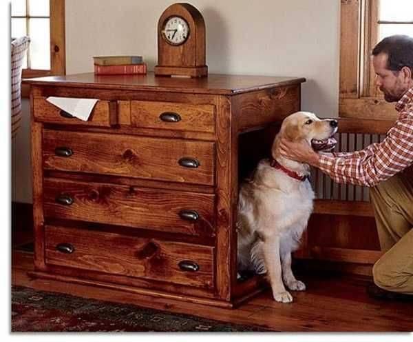 Как приучить собаку к месту? 13 фото как научить щенка спать на своем месте ночью? особенности приучения к месту для сна щенков в 2 месяца и взрослых собак