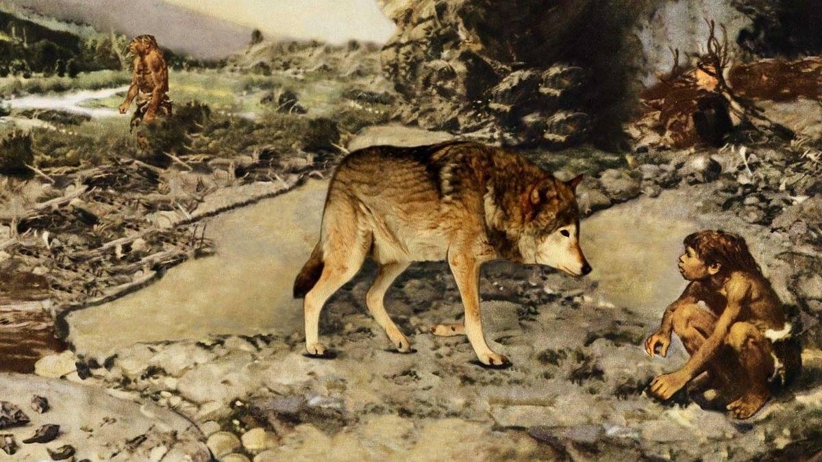 Первые собаки: когда и где?