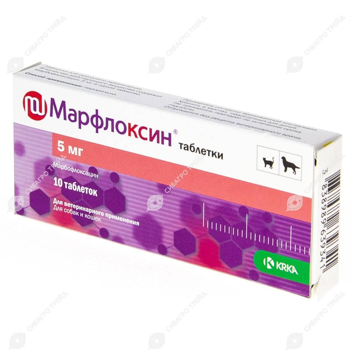 Антибиотик марфлоксин 2% 10% для кошек и собак