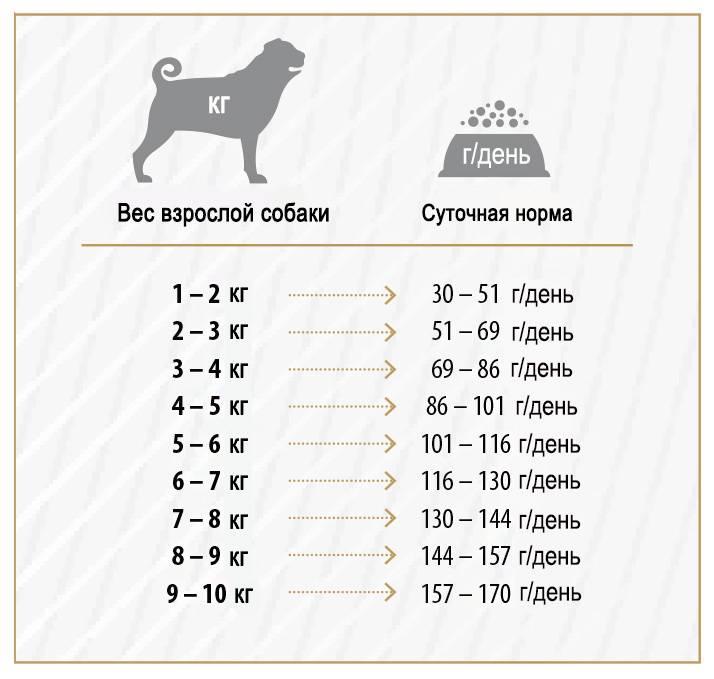 Чем кормить алабая взрослого и щенка в 2 месяца