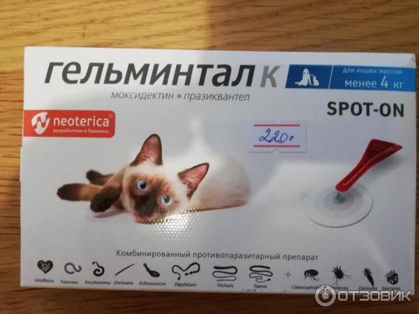 Обзор препарата гельминтал для кошек: капли, таблетки, сироп