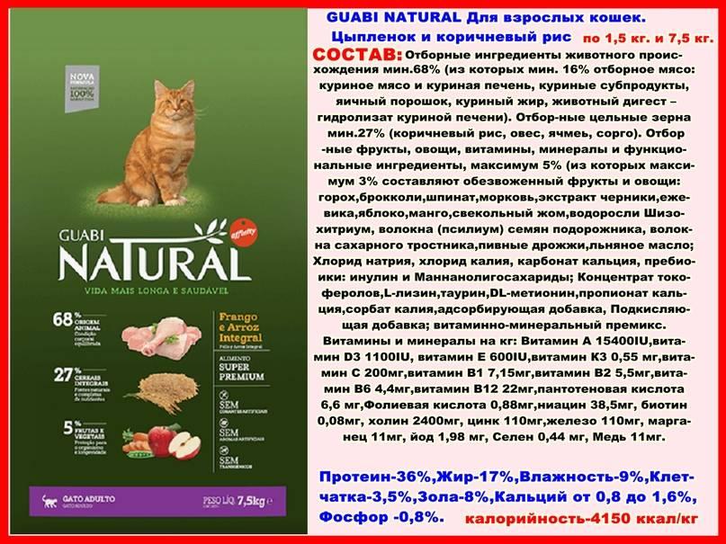 Корм для кошек «гуаби натурал»: обзор продукции бразильского производителя