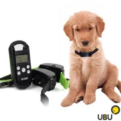 Рейтинг лучших электроошейников для собак