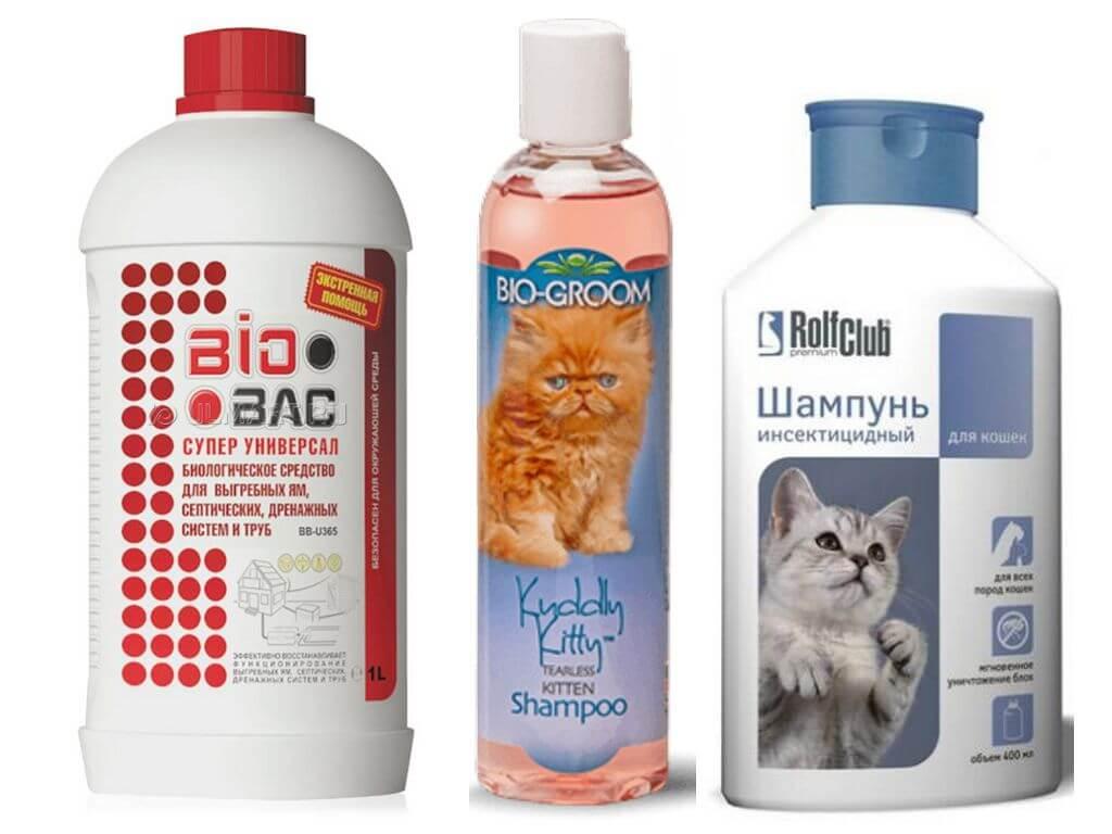 Средство от блох для кошек и котов — какие лучше | отзывы
