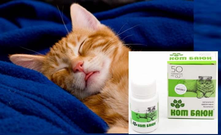 Кот баюн для кошек:  инструкция по применению, отзывы, цена