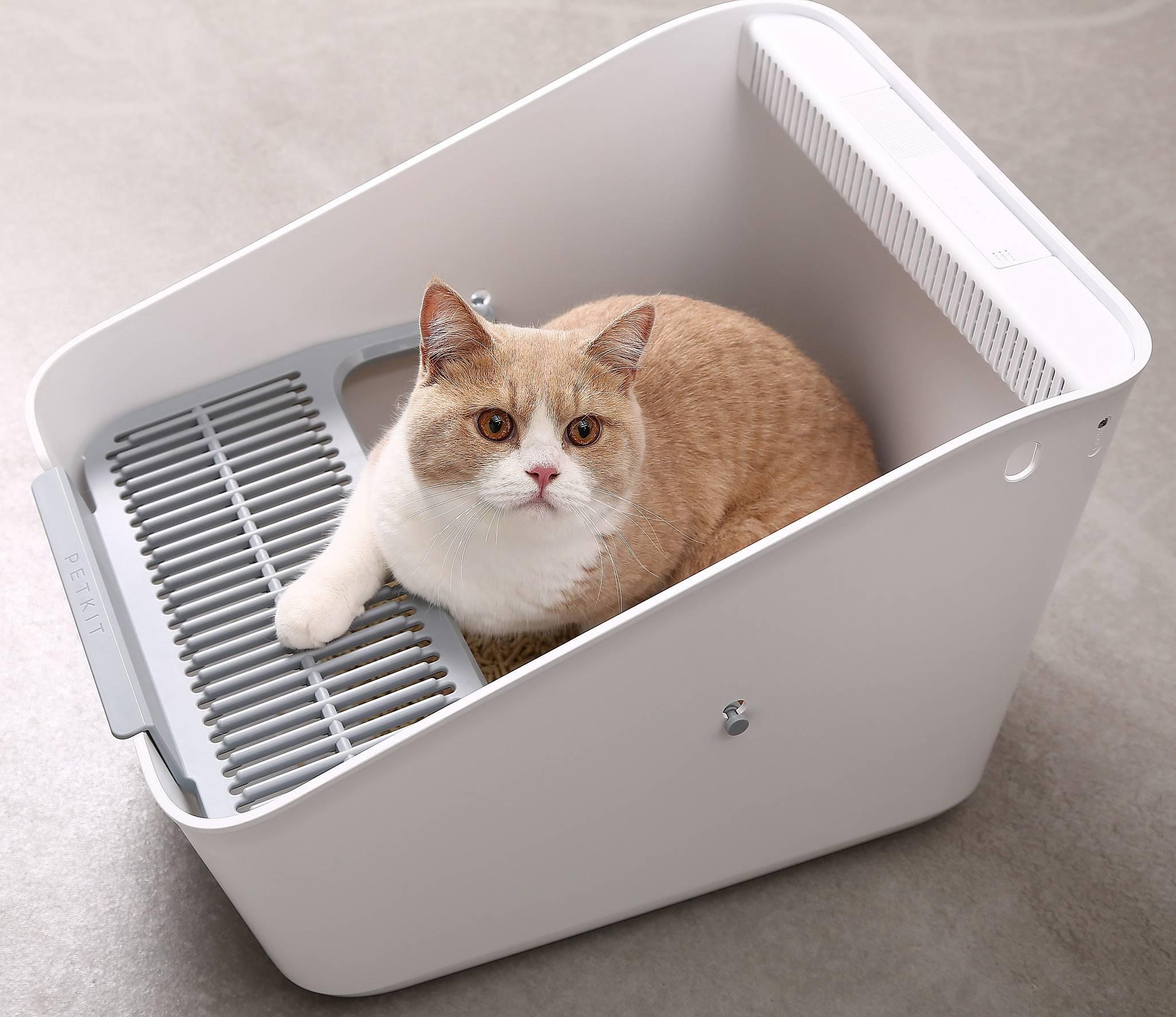 10 лучших закрытых туалетов для кошек