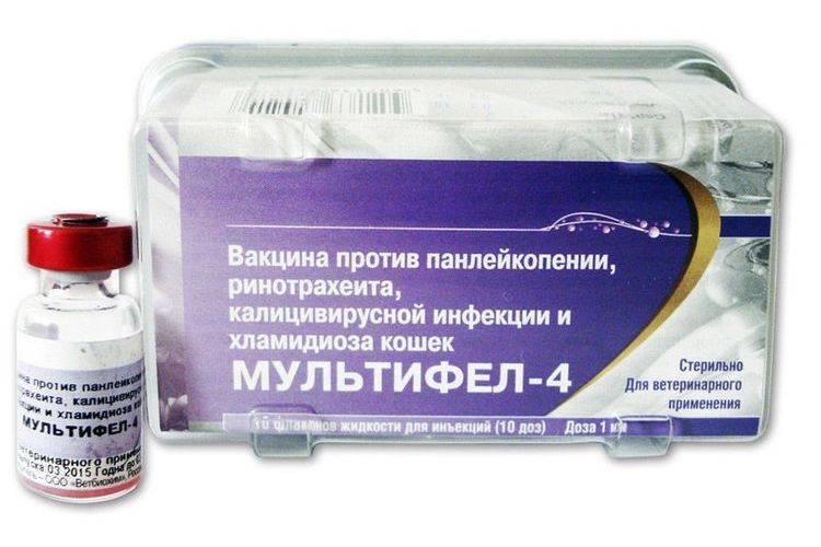 Поливак тм лош 0 - купить, цена и аналоги, инструкция по применению, отзывы в интернет ветаптеке добропесик