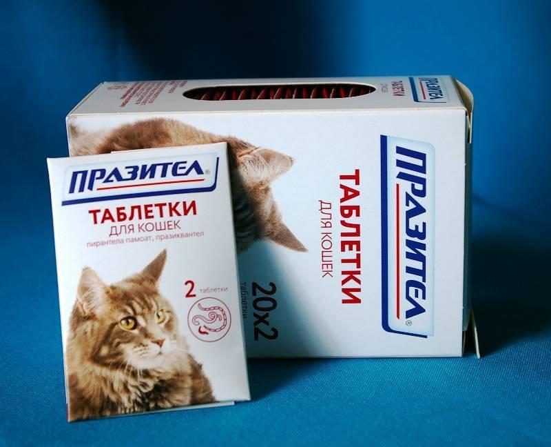 Дирофен суспензия 20 для котят и щенков