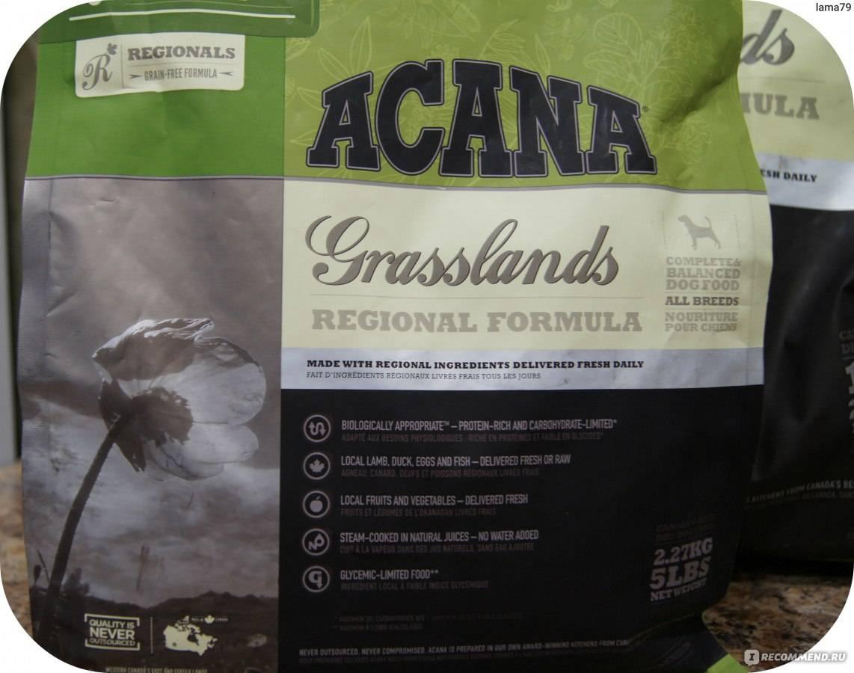 Корма для собак acana regionals, каталог корма для собак acana regionals: состав, отзывы, чем отличается формула корма для собак акана реджиналс