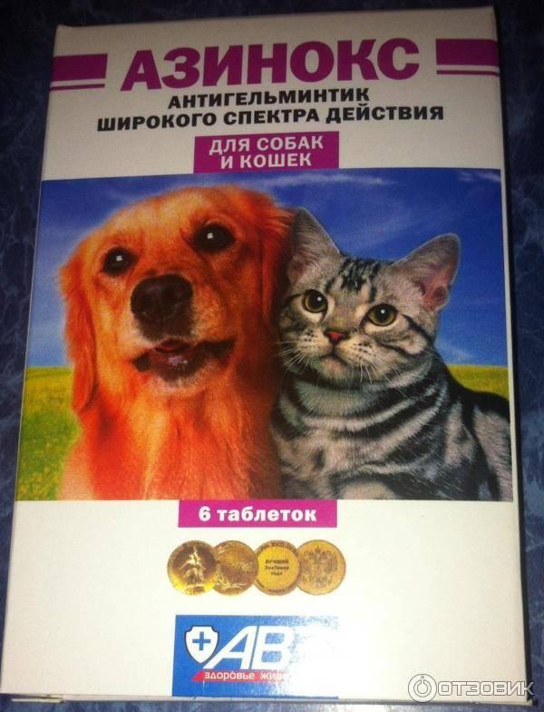 Дегельминтизация домашних животных