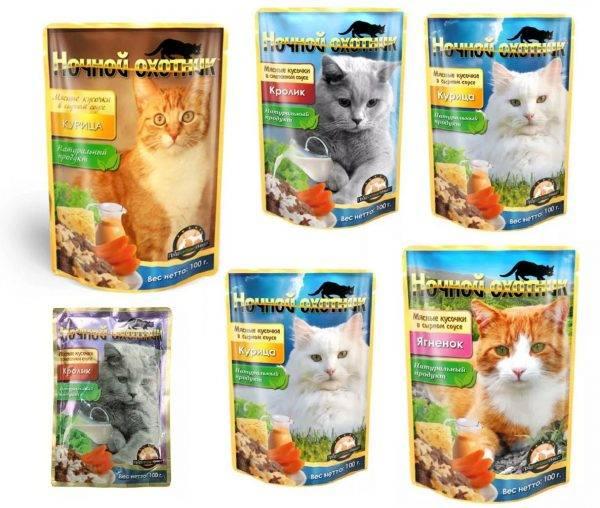 Обзор всех видов кормов для кошек: описание и отзывы ветринаров, какой лучше