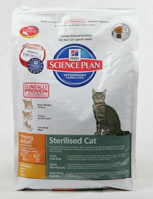 Корм для кошек hills: отзывы владельцев и ветеринаров, состав