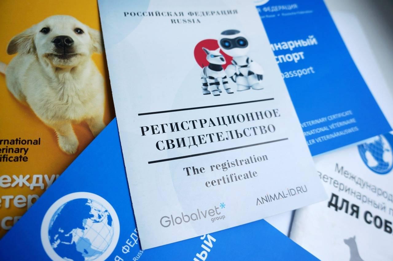 Налог на домашних животных в россии 2021