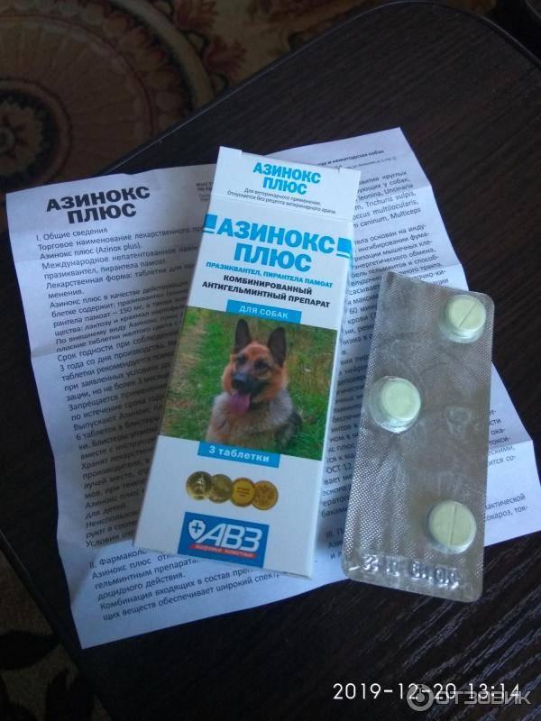 Азинокс плюс для собак