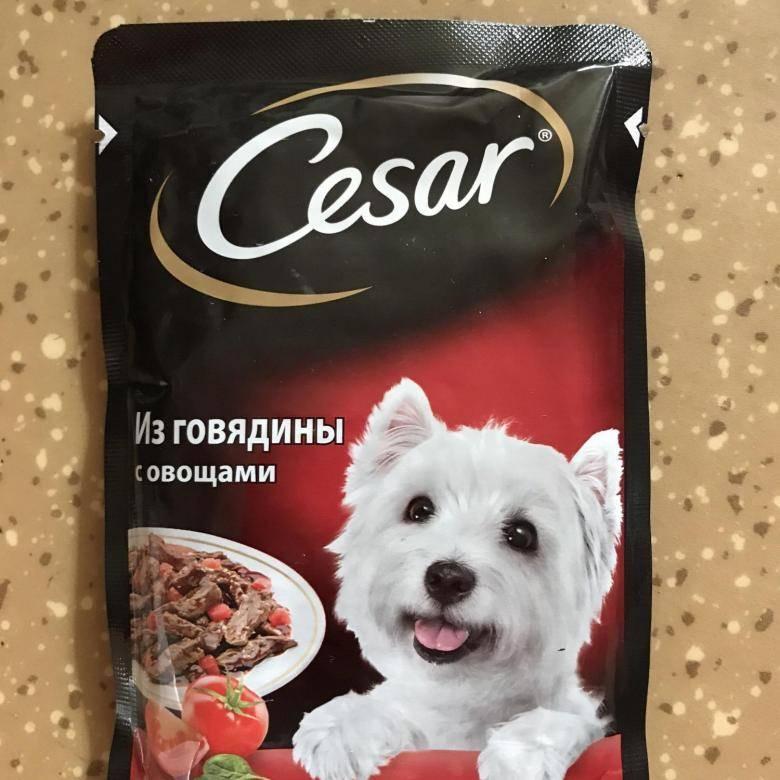 Влажные корма и консервы для собак «цезарь» — анализ состава, отзывы специалистов и хозяев