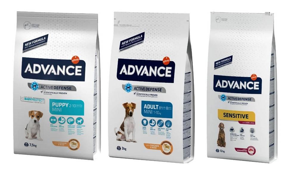 Корм для кошек advance (адванс) - отзывы и советы ветеринаров