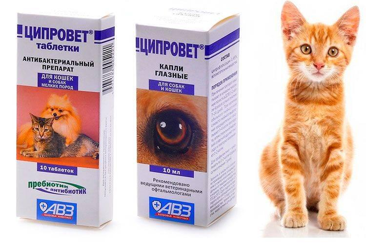 Ципровет для кошек, щенков и мелких собак, 10 табл.