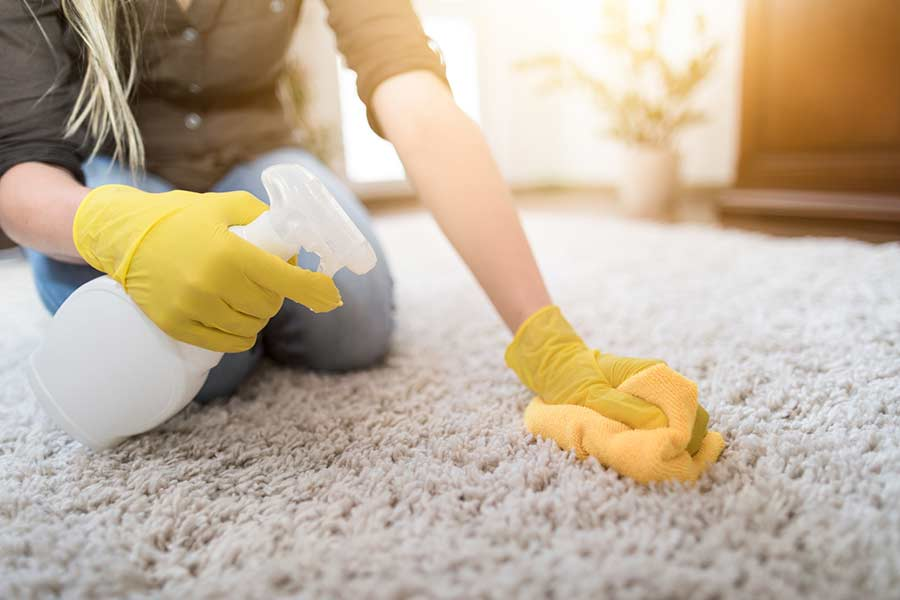 Как избавиться от запаха собачьей мочи на ковре