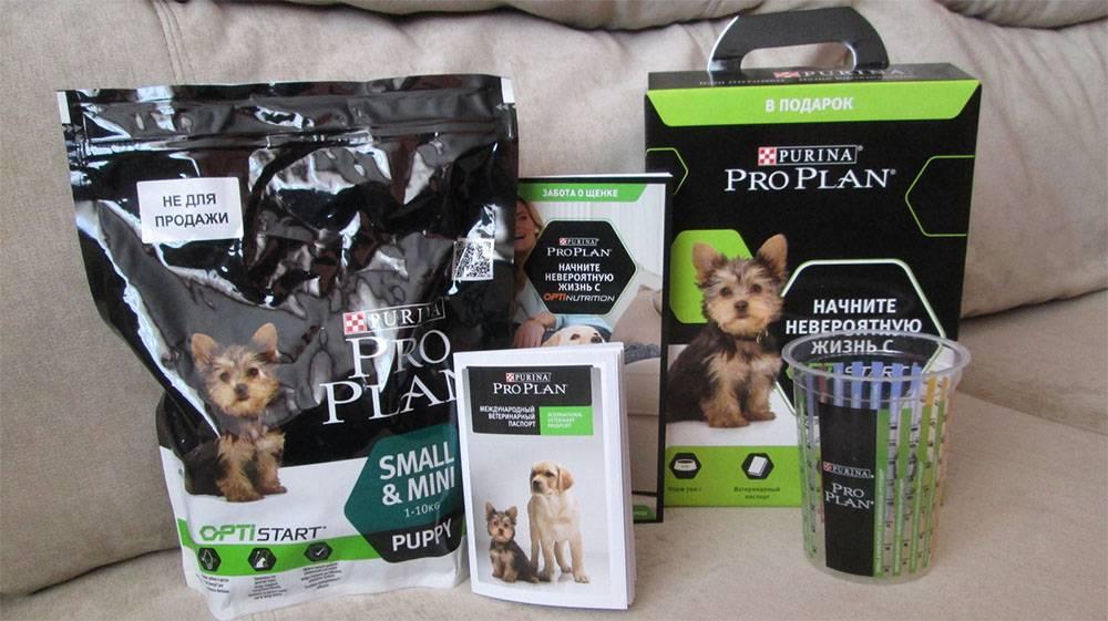 Корм «проплан» для собак мелких пород: состав, мнения ветеринаров, плюсы и минусы продукта