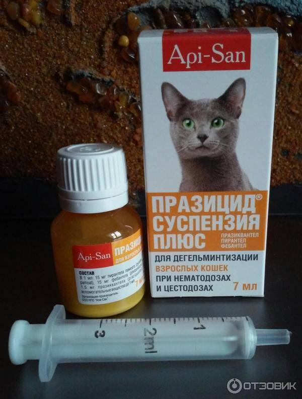 Рейтинг средств от гуляния кошек