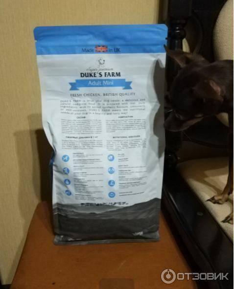 Корм для собак karmy: отзывы, разбор состава, цена - петобзор