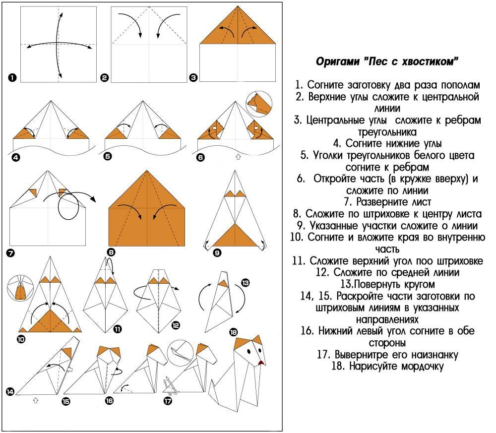 Схема складывания собаки из бумаги в технике оригами: инструкция с фото и описанием