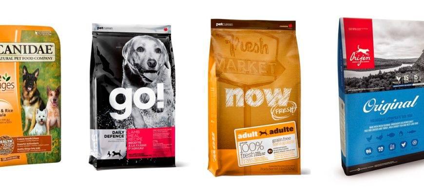 Корма холистик для собак: что это такое? рейтинг лучших сухих и влажных кормов холистик-класса