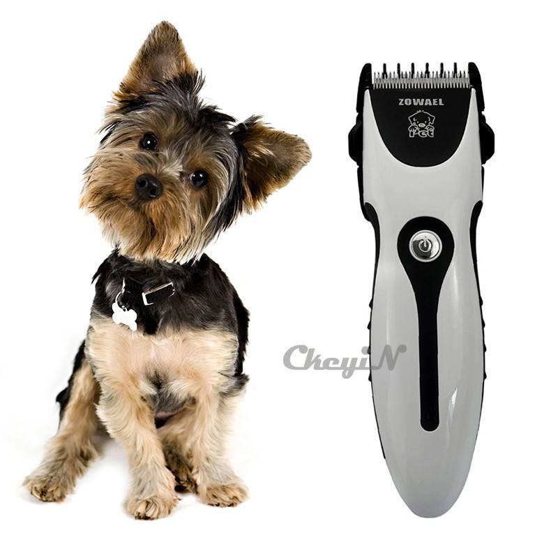 Как выбрать машинку для стрижки собак в домашних условиях, простые или профессиональную, роторную или механическую