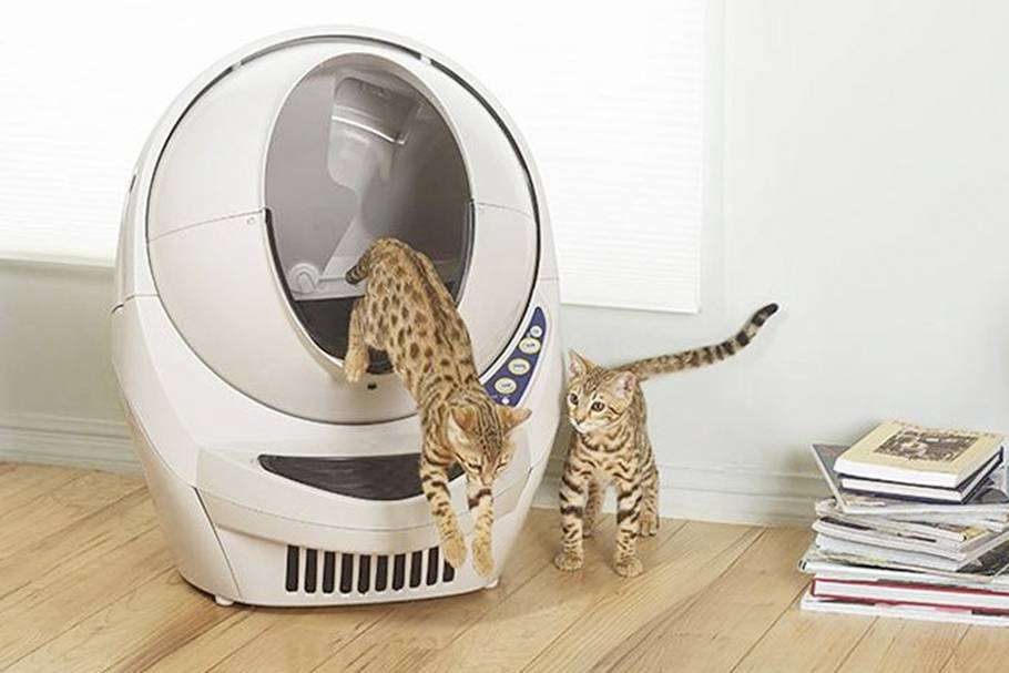 Самоубирающийся туалет для кошек