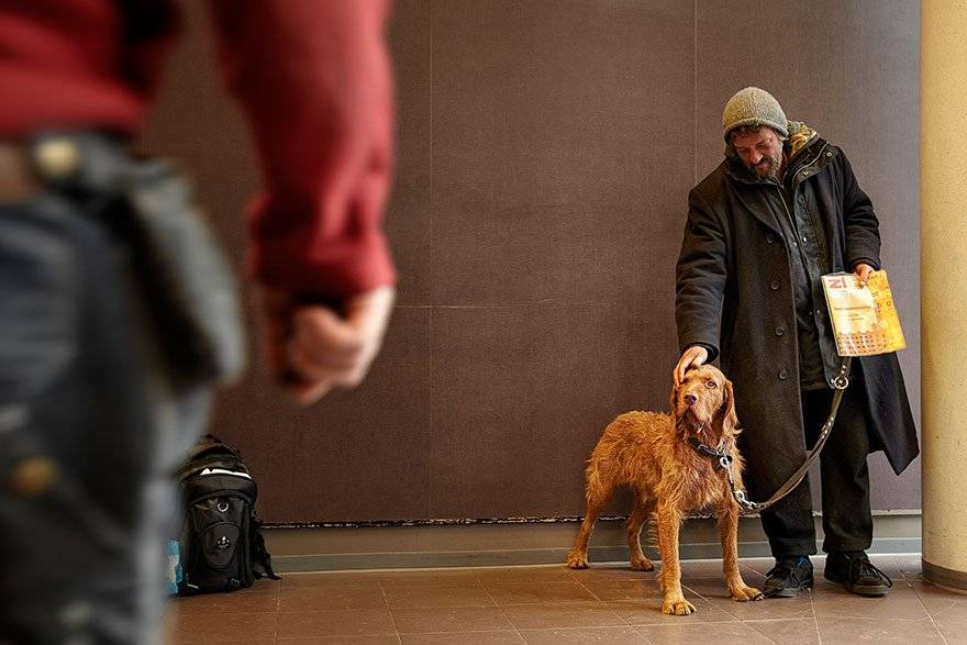 Собака не любит хозяина: ветеринар рассказал, как он это сразу видит на приеме