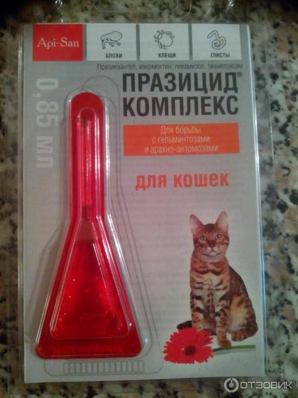 Блохнэт max для кошек