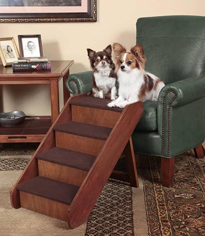 Лестница для собак мелких пород своими руками, пандус для такс