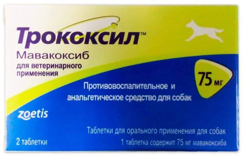 Трококсил для собак – лекарство от боли