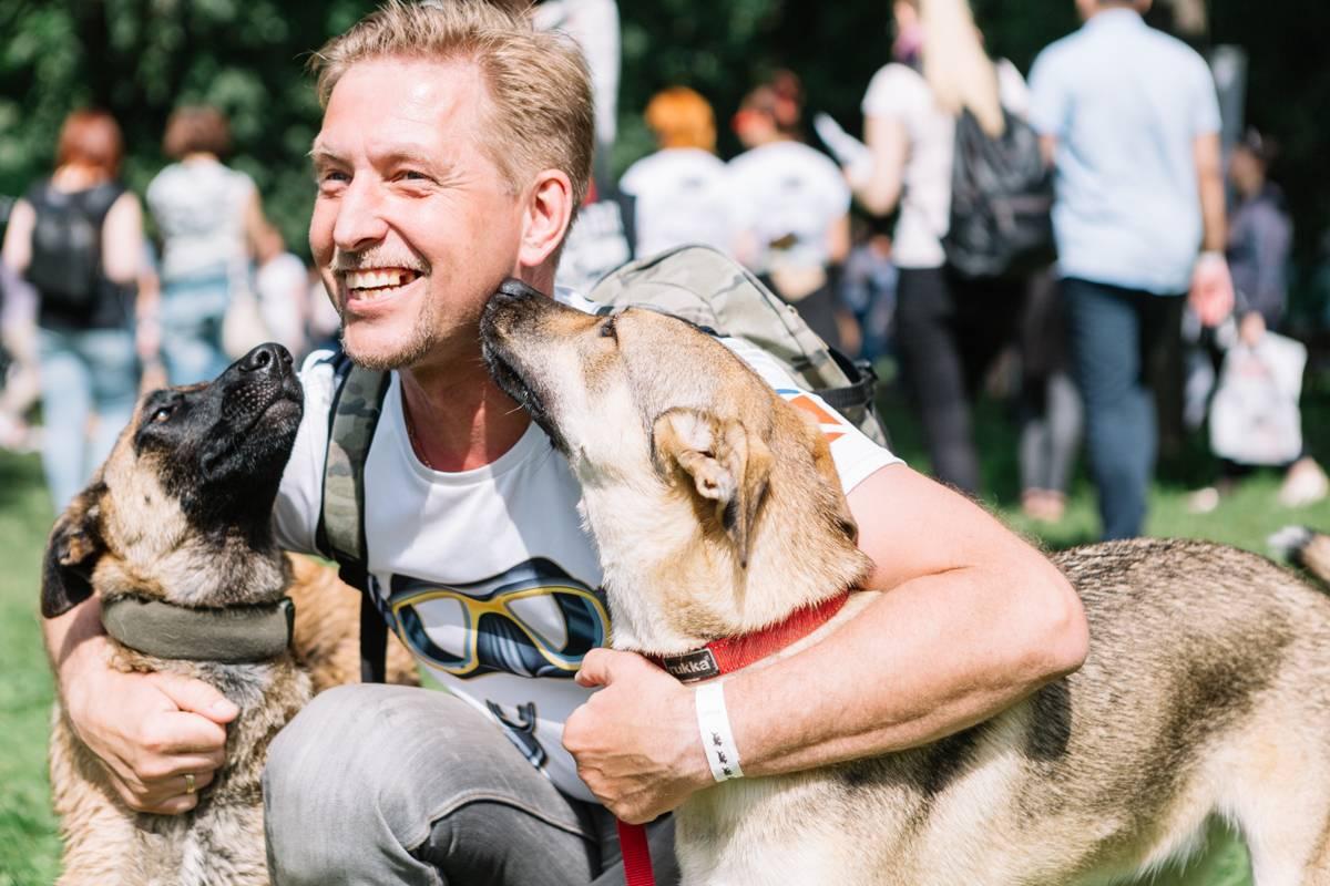 Выставка бездомных собак из московских приютов