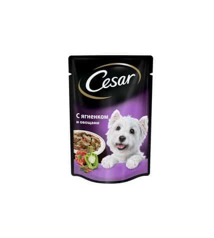 "Корм для собак ""цезарь"": состав, отзывы. корм супер-премиум класса для собак"