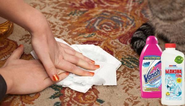 Топ-5 эффективных способов как вывести запах кошачьей мочи с ковра