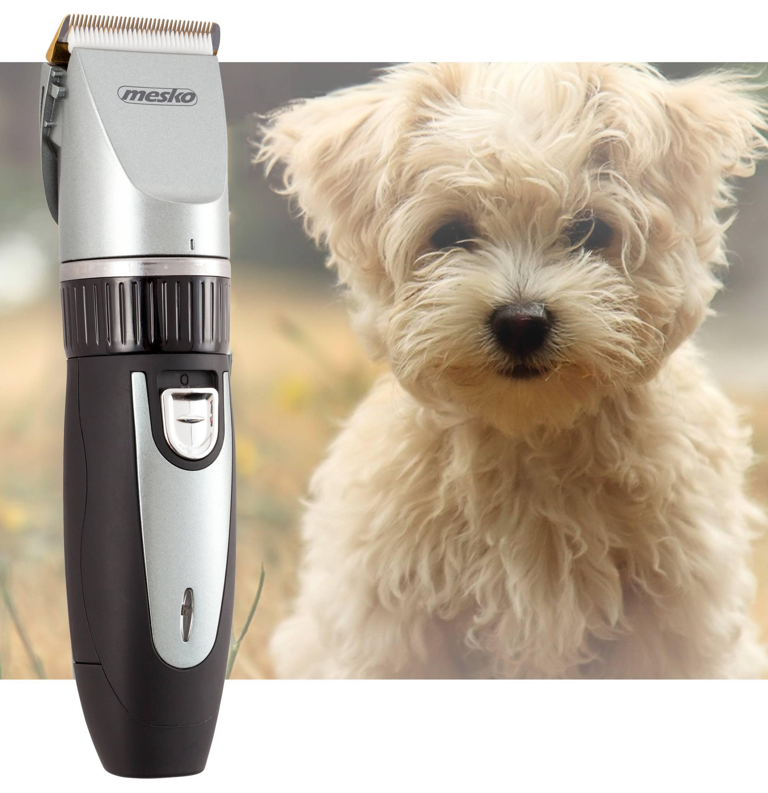 Обзор машинок для стрижки собак от разных производителей и советы по их выбору