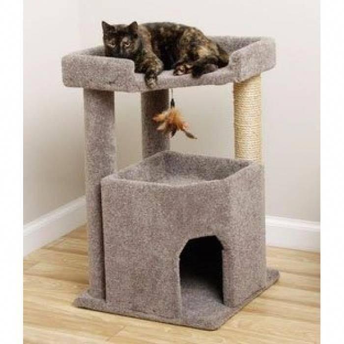 Как содержать несколько кошек (с иллюстрациями)